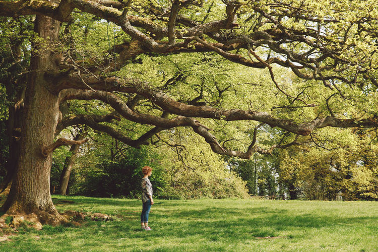 Full length of woman standing by tree at park