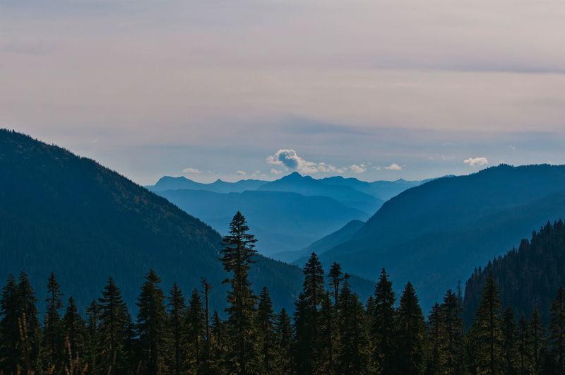 Chinook Pass at