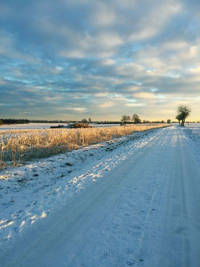 Snow Winter Cold Temperature Nature Weather Sky Landscape Scenics Beauty In Nature Field Tranquility Tranquil Scene No People Outdoors Cloud - Sky Day Light And Shadow Wintersun Soest Feldwege um Soest herum