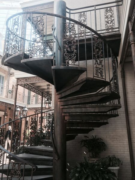 Gaylord Opryland Resort Staircase Indoors  Potted Plant Plant Group Of Objects Day No People