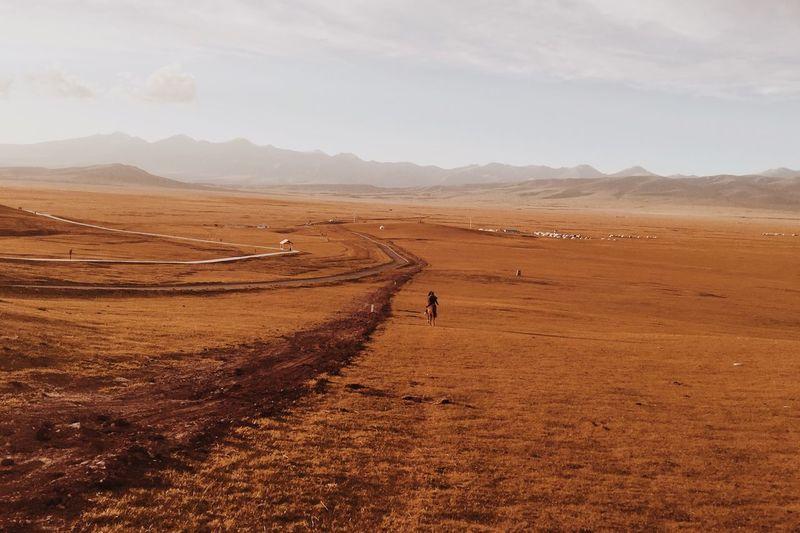 Man Riding Horse On Landscape Against Sky