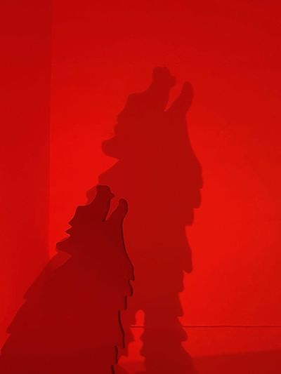 Silhouette Red