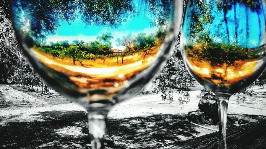 Vineyard Winery Wineglass Fantasy Photography Perspective Photography Through The Glass Daydreaming Fantasy Edits Wine Glasses Vines And Leaves Cellphone Photography Rancho Bernardo Winery Abstractions In Colors Abstract Photography Abstract Glass Full Fill Up My Glass With Living The Week Of Eyeem Wine Not Neon Life