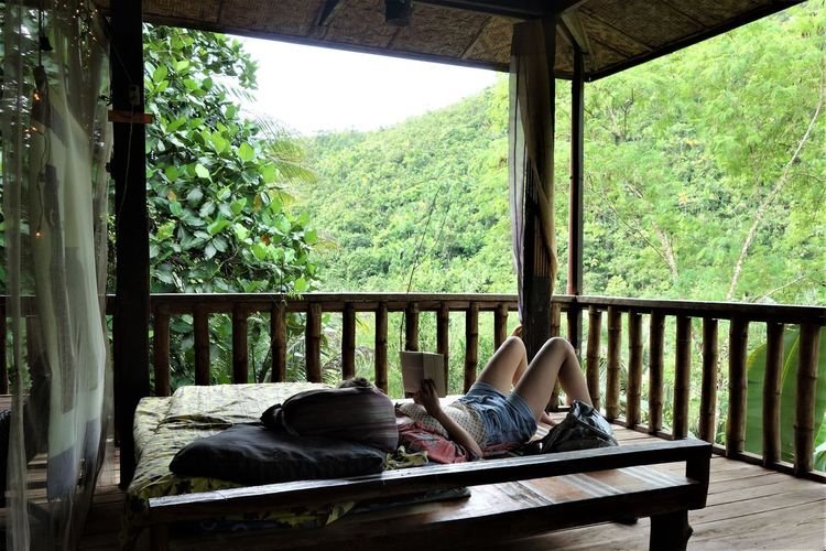 Bohol Jungle