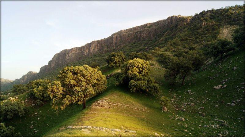 Iran Relaxing Hello World 2015  World Greatshot Top Sony Taking Photos First Eyeem Photo Landscape Nature Green Best  Eye4photography  EyeEmBestPics EyeEmbestshots Shot