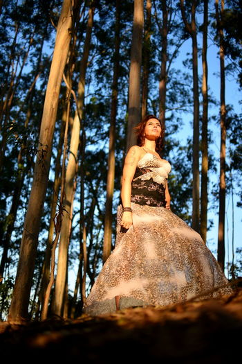 Low angle view of woman in forest