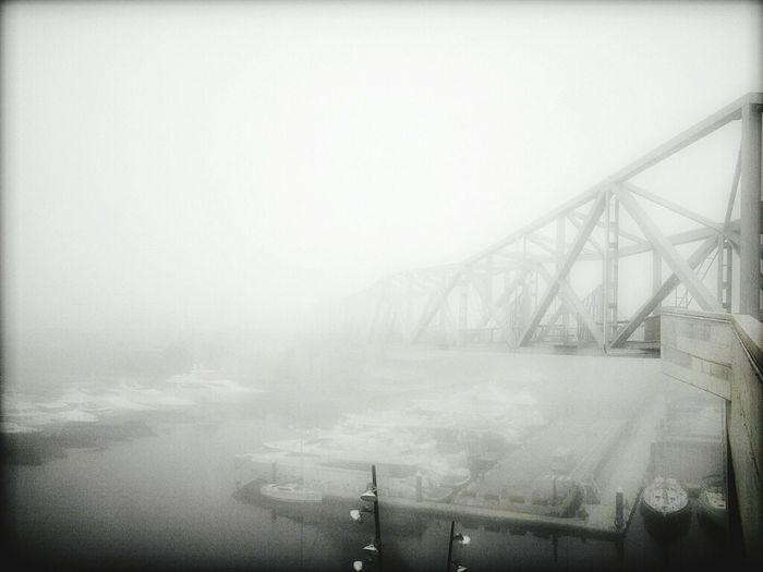 Niebla en