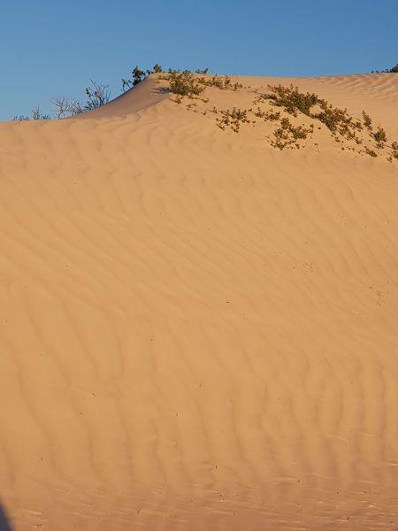EyeEm Selects Sand Dune Clear Sky Desert Arid Climate Sunset Sand Horizon Full Length Summer Environment
