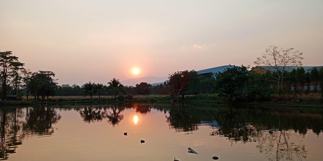 Tree Water Sunset Beauty Multi Colored Dawn Lake Gold Sun Reflection
