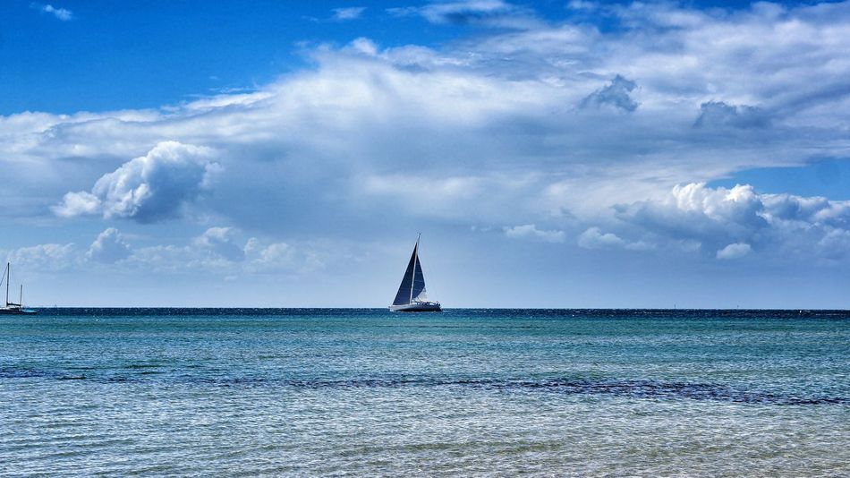 Sailing on the Bay Blairgowrie MelbournePhotographer Beauty In Nature Blue Cloud - Sky Day Horizon Over Water Nature Nautical Vessel No People Outdoors Sailboat Sailing Scenics Sea Sky Tranquil Scene Tranquility Transportation Water Waterfront
