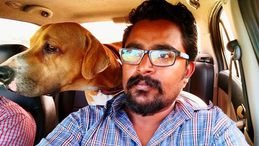 My Dog And Me Dog Traveller Transporting My Dog Difference In Views What Am Looking N My Dog Looking?