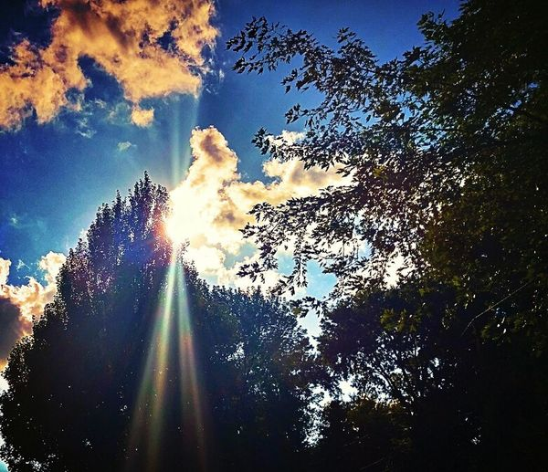 Sunbeams Normal, Il Hopes And Dreams Backyard Shots Sky And Trees Clouds & Sky Peaceful View Brillant Sky Relaxing