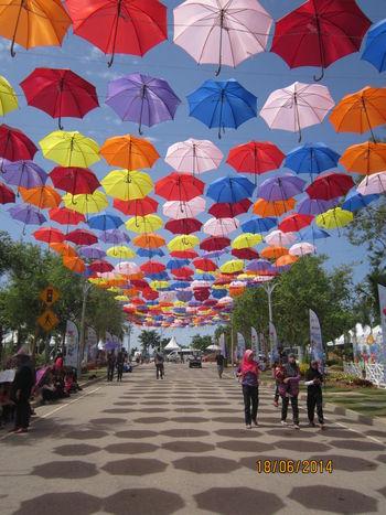 Eyeemnaturelover Landscape Floria Putrajaya 2014 Malaysia