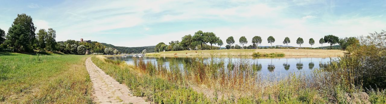 an der Weser bei Polle Hot Summer Day Polle Weser Weserbergland River Weser Castle Ruins Ferry Ferryboat Tree Water Agriculture Spraying Rural Scene Sky Cloud - Sky Countryside Blade Of Grass