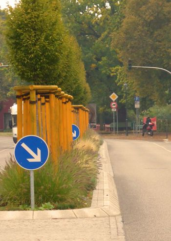 Paint The Town Yellow Communication Day Discover Berlin Guidance Nature No People Outdoors Road Road Sign The Way Forward Transportation Tree