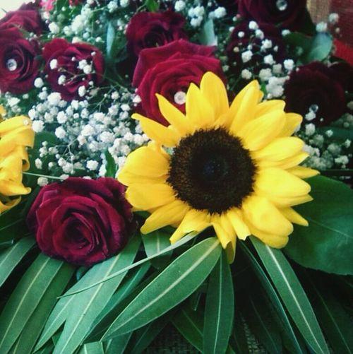 Flowers 2 Anni D'amore Secondo Anniversario Assieme