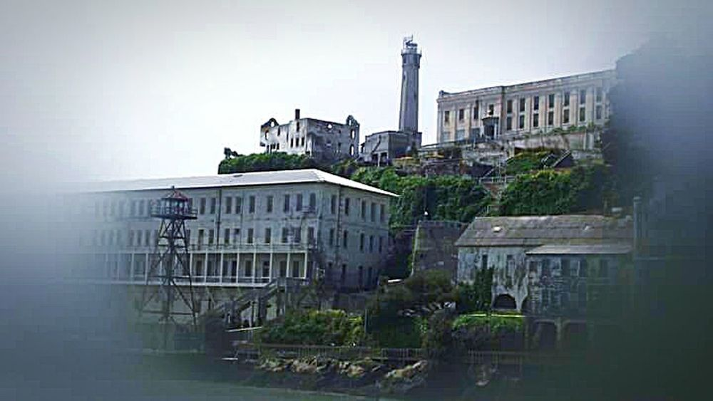 Alcatraz Alcatraz Island The Rock The Photojournalist - 2016 EyeEm Awards Trees And Sky Tourist Attraction  Prison Prison Island Island Penitentiary Boat Tour San Francisco Architecture Photography My Photography The Architect - 2016 EyeEm Awards San Francisco Bay