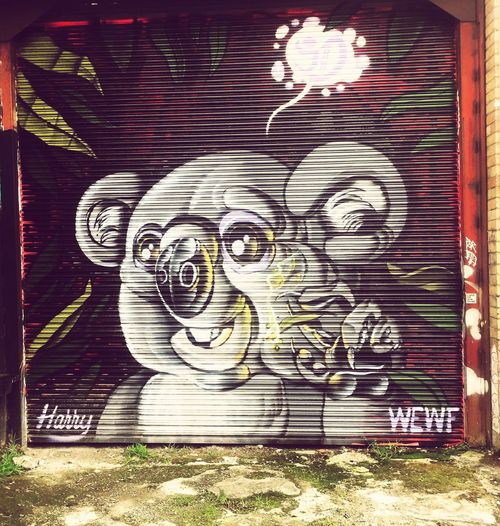 Koala Yoga StreetArtEverywhere Modern Mithology Free Yourself From Yourself