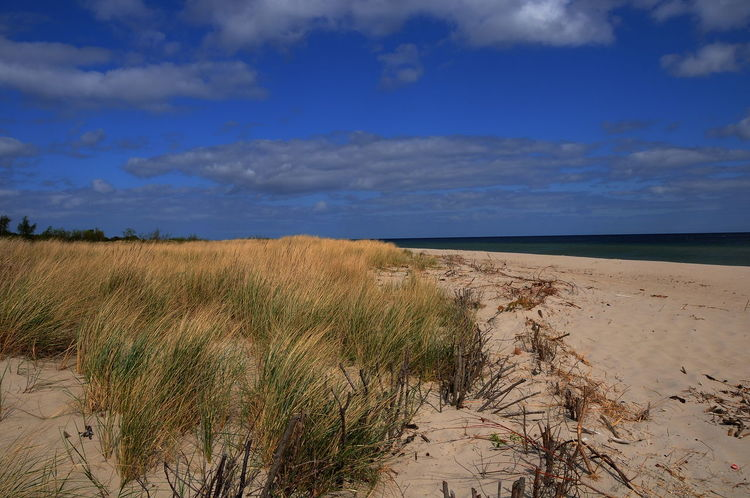 beach Baltic Sea Baltic Sea Beach Beach Beauty In Nature Cloud - Sky Day Grass Growth Horizon Over Water Landscape Marram Grass Nature No People Outdoors Sand Sand Dune Scenics Sea Sky Tranquil Scene Tranquility Water