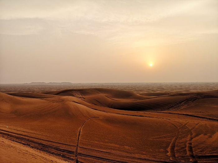Safari Sand