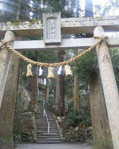tottori,japan✨✨ Kamochi shrine 気まますぎるドライブ Naturelovers 金持神社 開運祈願 旅の記憶 Zinjaomairi Landscape Daily_photo_jpn Shrine_of_japan Japaneseshrine Nature Photography EyeEmNewHere EyeEm Best Shots 滝巡り Sushi Lover Walkway The Week on EyeEm パワースポット Lovely 中国地方へ温泉旅2017年3月🐾👣 Tree Steps Road Steps And Staircases Architecture Built Structure