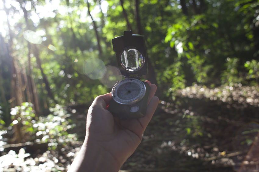 Human Hand Holding Compass at Forest Adult Adventure Close-up Compass Direction Flare Forest Holding Human Body Part Human Hand INDONESIA Men Morning Navigational Compass No People One Person Outdoors People Sunlight Tree