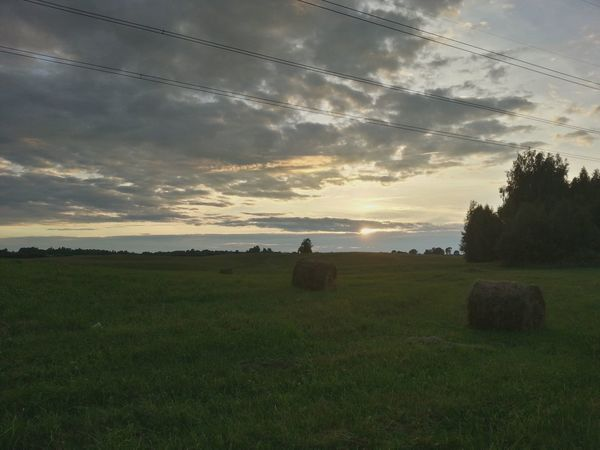 Lithuania Lithuania Nature Lithuania Nature <3 Panorama Panoramic Fieldscape Fields And Sky Nature Nature Photography Nature_collection Naturelovers View Relaxing Sunset_collection Sunset Beauty In Nature Grass