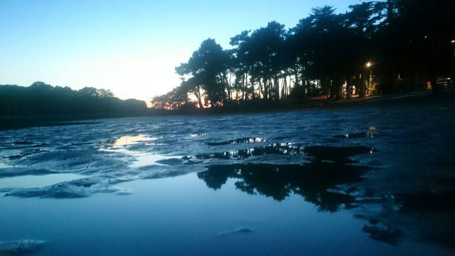 Vannes Bretagne France Conleau Beach Plage