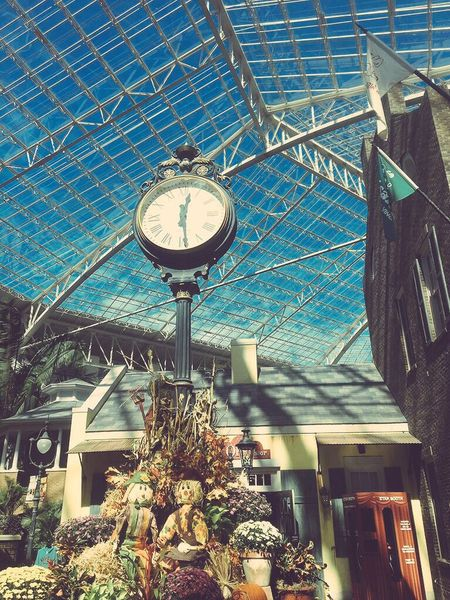 Gaylord Opryland Resort Tourism Architectural Feature Low Angle View Plant Blue Outdoors No People Freshness
