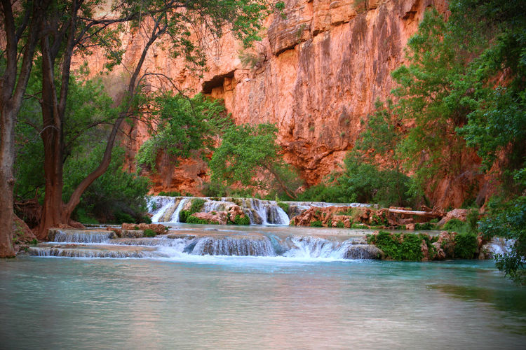 Beauty In Nature Canyon Canyon Water Flowing Water Forest Grand Canyon Growth Havasupai Havasupai Nature No People Non-urban Scene Red Rocks  River Rock - Object Rock Formation Running Waterfall Scenics Supai,AZ Tranquil Scene Tranquility Travel Destinations Water Waterfall Waterfront