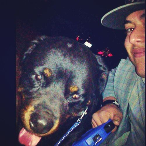 I Double Dog Dare you to Fuck With Me! His name is not HellMutt for no reason!! Rottweiler Breed BIGDAWGS BodyGuard FourPawKilla BlockPatrol RespectTheBite RunNigga NightOwls vampirelife FreaksComeOutANight IAintWorryAboutNothing TryMe DogLover night LikeABoss LikesForLikes likealways Love look WOOFWOOF followbackteam follow4follow AllDogsGoToHeaven MansBestFriend PartnerInCrime HoldTheFortDown InstaOhShit OnPoint