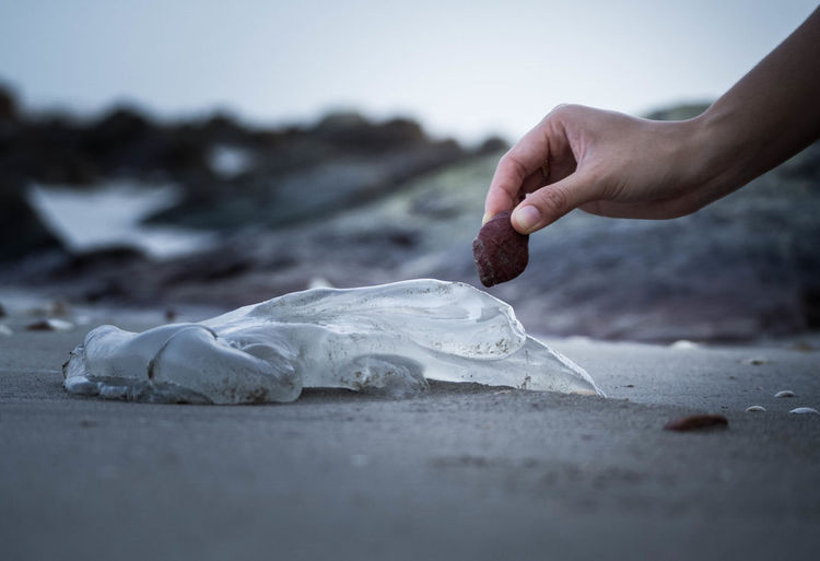 Cropped image of hand holding stone over ice at beach