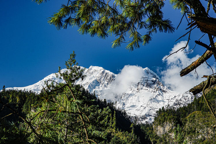 Low angle view of snowcapped mountains against clear blue sky