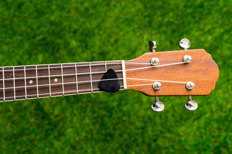 Close-Up Of Guitar Against Tree