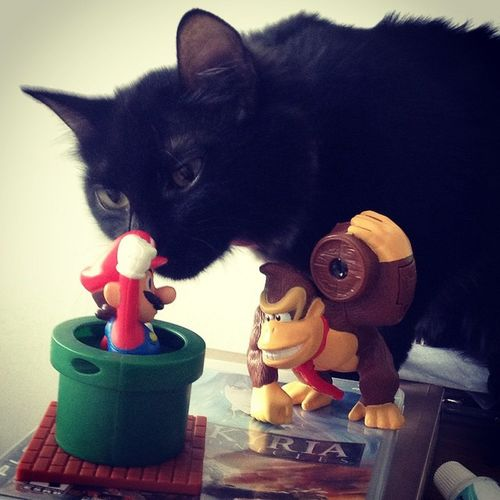 """It's-a behind you!"" Cat Super Mario Donkey Kong Nintendo"