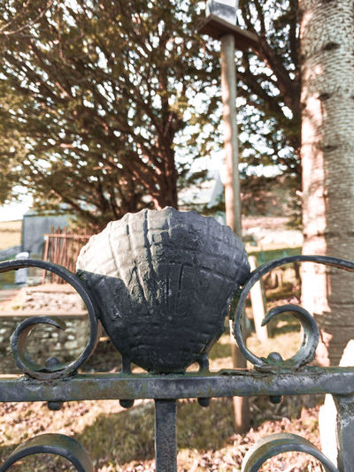 a shell within a churchyard gate Shell Symbol Scallop Shells Pilgrimage Church Chapel Wales UK Capel Trees Low Sun Winter Sunset Light And Shadow Countryside Iron Gate Cemetery Gates Church Gate Church Gardens Metal Old Metal Wales Trail Ancient Road Pilgrim Route Tree Fall