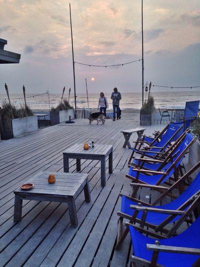 Sunset Noordzee Netherlands Blues