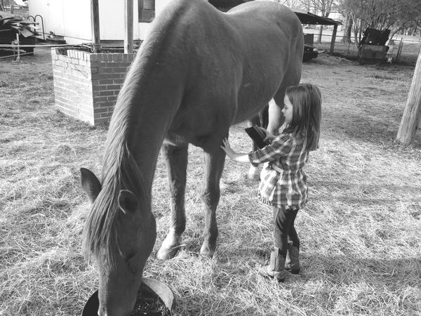 Girl power. Horses. A girl and her horse love my horses