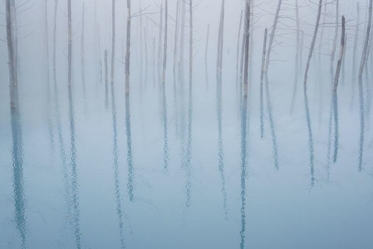 青い池 Hokkaido