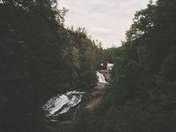 The Great Outdoors - 2016 EyeEm Awards hiking in DuPont before nightfall to look for the Blue Ghost firefly.