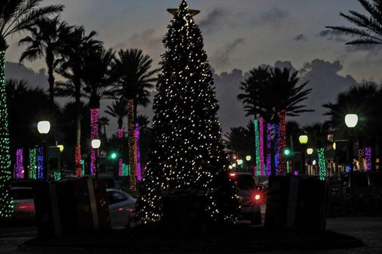 Neptunes lit NeptuneBeach Christmas2015 Jaxbeach Jacksonville Duval  904 Jaxbeach Onlyinduval Firstcoastnews News4jax Eyesofjax Igersjax Voidlive Ilovejax Igersdaily Lights Christmastree Christmaslights MerryChristmas Tistheseason Roamflorida Pureflorida Florida