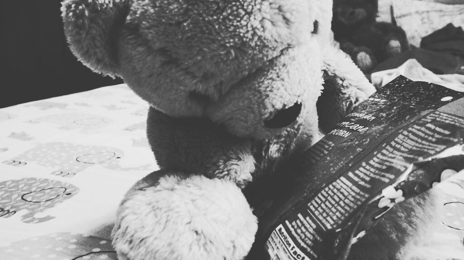 black day and black mood. A_Ruang Bear Cute Doll Bad Mood Bad Day Life Enthusiasm