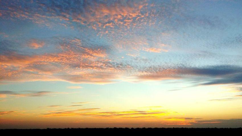 Norcal Sunrise Sunrise Clouds And Sky Good Morning Taking Photos