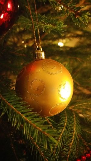Christmas Christmas Decoration Celebration Christmas Tree Christmas Ornament Hanging Decoration No People Close-up Indoors  Christmas Gold Ball Green And Gold Tradition Hanging Christmas Spirit