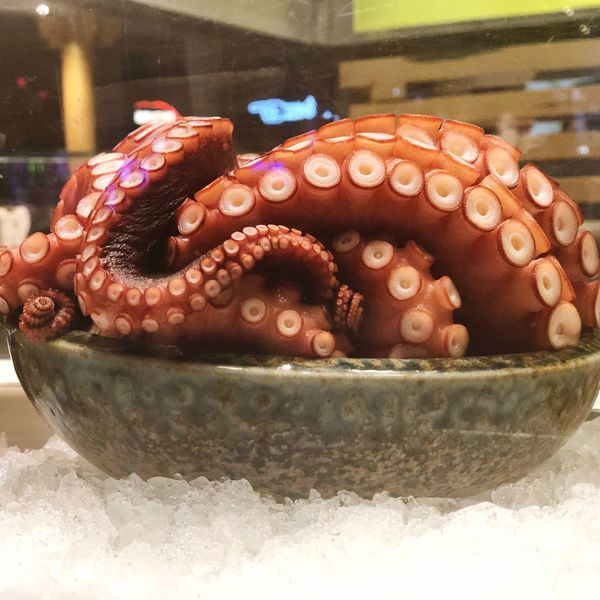 🦑 🐙 Japanese  Seafoods Food Food And Drink No People Table Indoors  Sweet Food Close-up Freshness Ready-to-eat Day