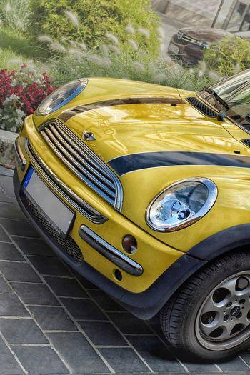 Yellow Miniminor Reflection Parking