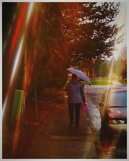 Rainy Days Walking In The Rain Umbrella☂☂ Dripping From Rain Capture The Moment. Outdoors Color Photography Love Of Photography Art Artistic Photography Streamzoofamily Love Photography EyeEm Gallery Getty & EyeEm Collection Oregon Beautiful Oregonexplored Oragonian Puddles Oregon Rainy Days Oregon Rain Rain Drops Splash Oregon Beauty Oregon Weather Rainy Season Wet Wet Wet