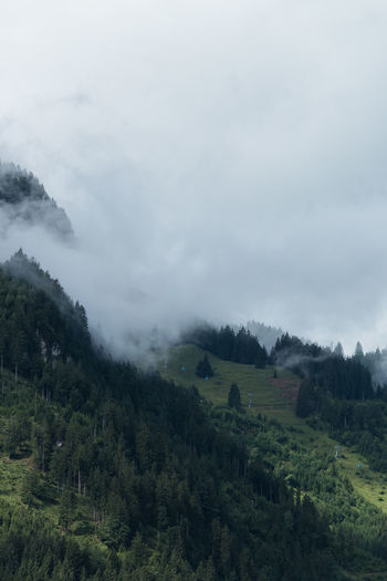Low clouds in the mountains. Allgäu Beauty In Nature Day Fir Forest Fir Tree Grass Hiking Landscape Low Clouds Mountain Nature No People Nusshain 07 17 Outdoors Ropeway Scenics Sky Tranquil Scene Tranquility Tree Copy Space