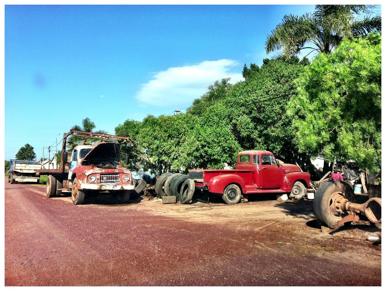 transportation, tree, land vehicle, car, mode of transport, day, red, sky, road, no people, outdoors, palm tree, nature