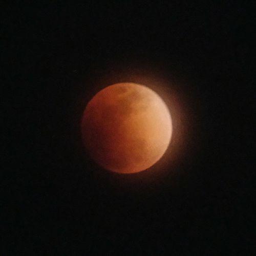 運良く見られた 皆既月食 Super Blue Blood Moon Astronomy Moon Night No People Nature Space Beauty In Nature